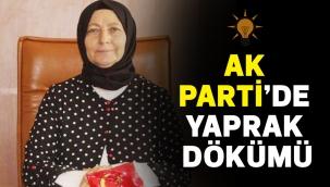 AK PARTİ'DE YAPRAK DÖKÜMÜ
