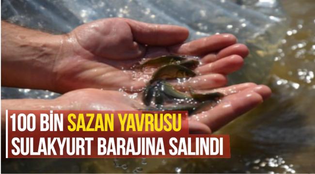 100 BİN SAZAN YAVRUSU SULAKYURT BARAJINA SALINDI